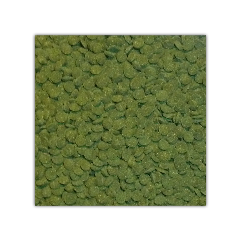 Spirulina Algae Sinkers