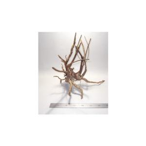 Gold Vine Driftwood