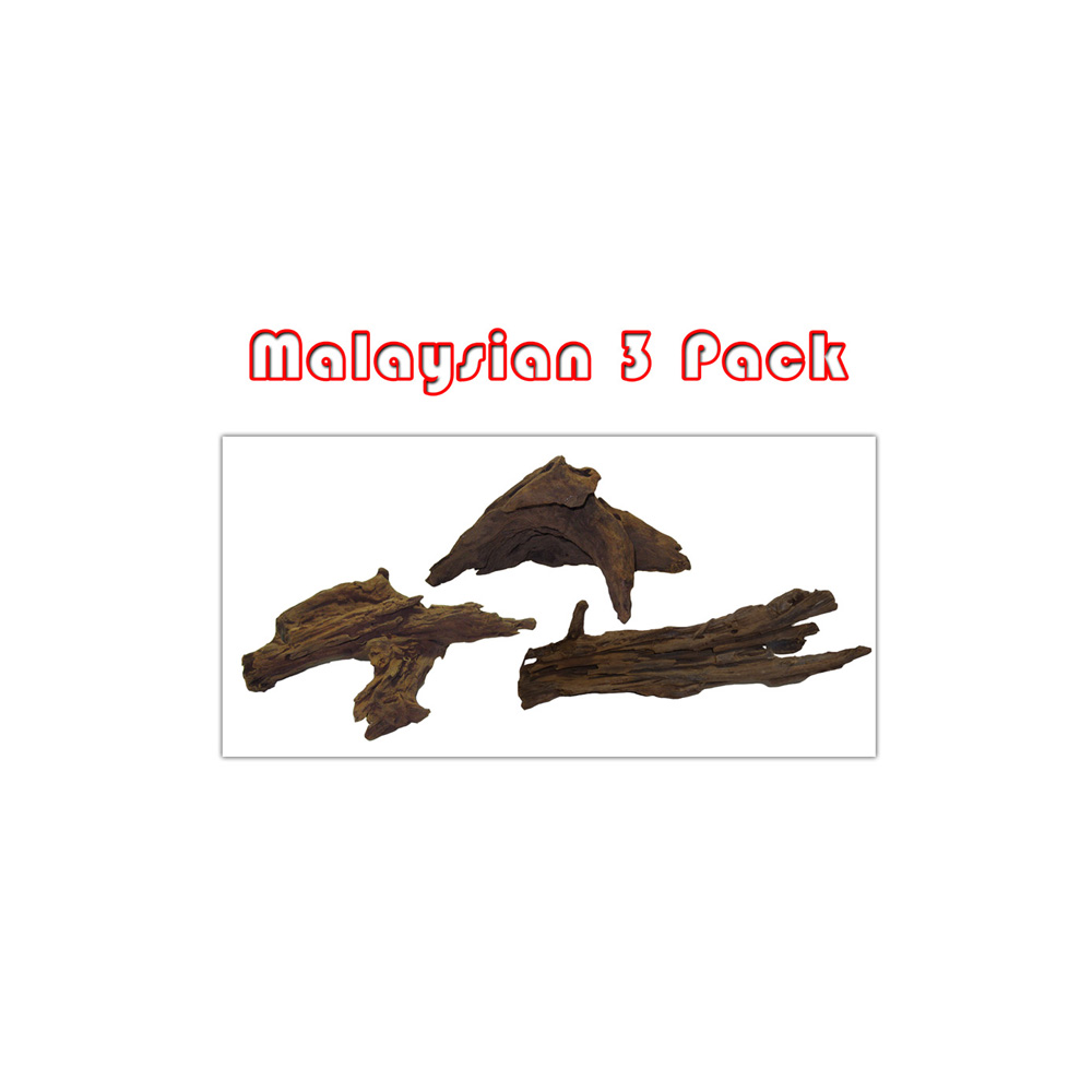 Medium Malaysian Driftwood 3 Pack