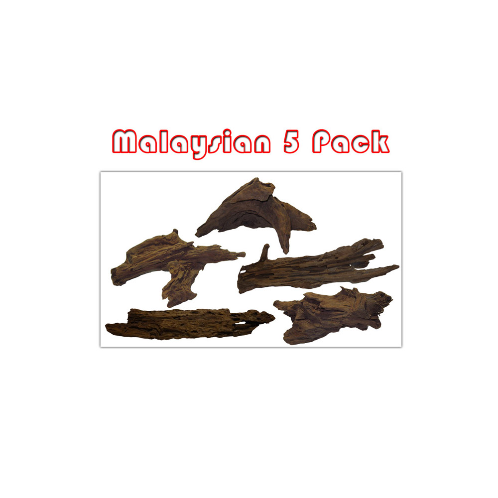 Medium Malaysian Driftwood 5 Pack