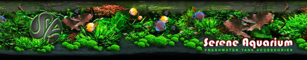 Serene Aquarium