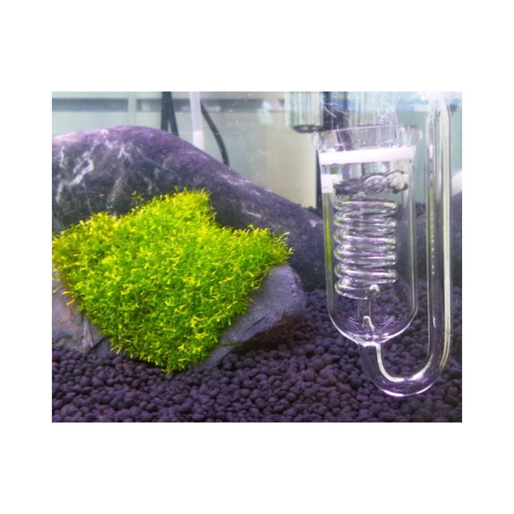 Mr Aqua Glass Bubble Counter and Diffuser 1