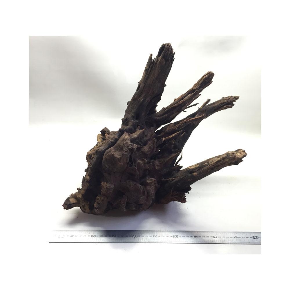 Horn wood Driftwood