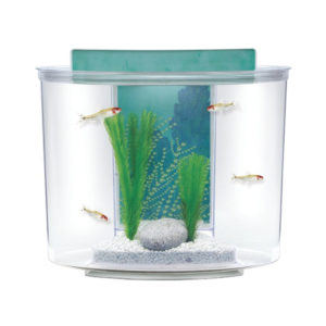 Marina Splash Aquarium Kit 1
