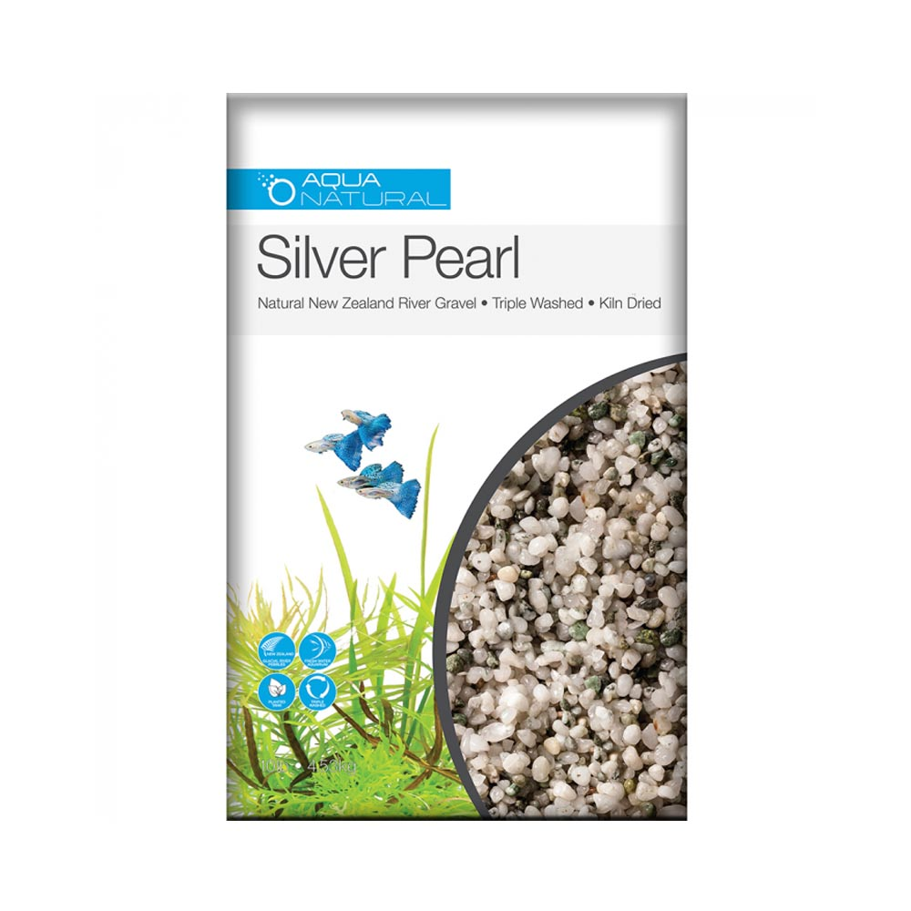 Silver Pearl 1