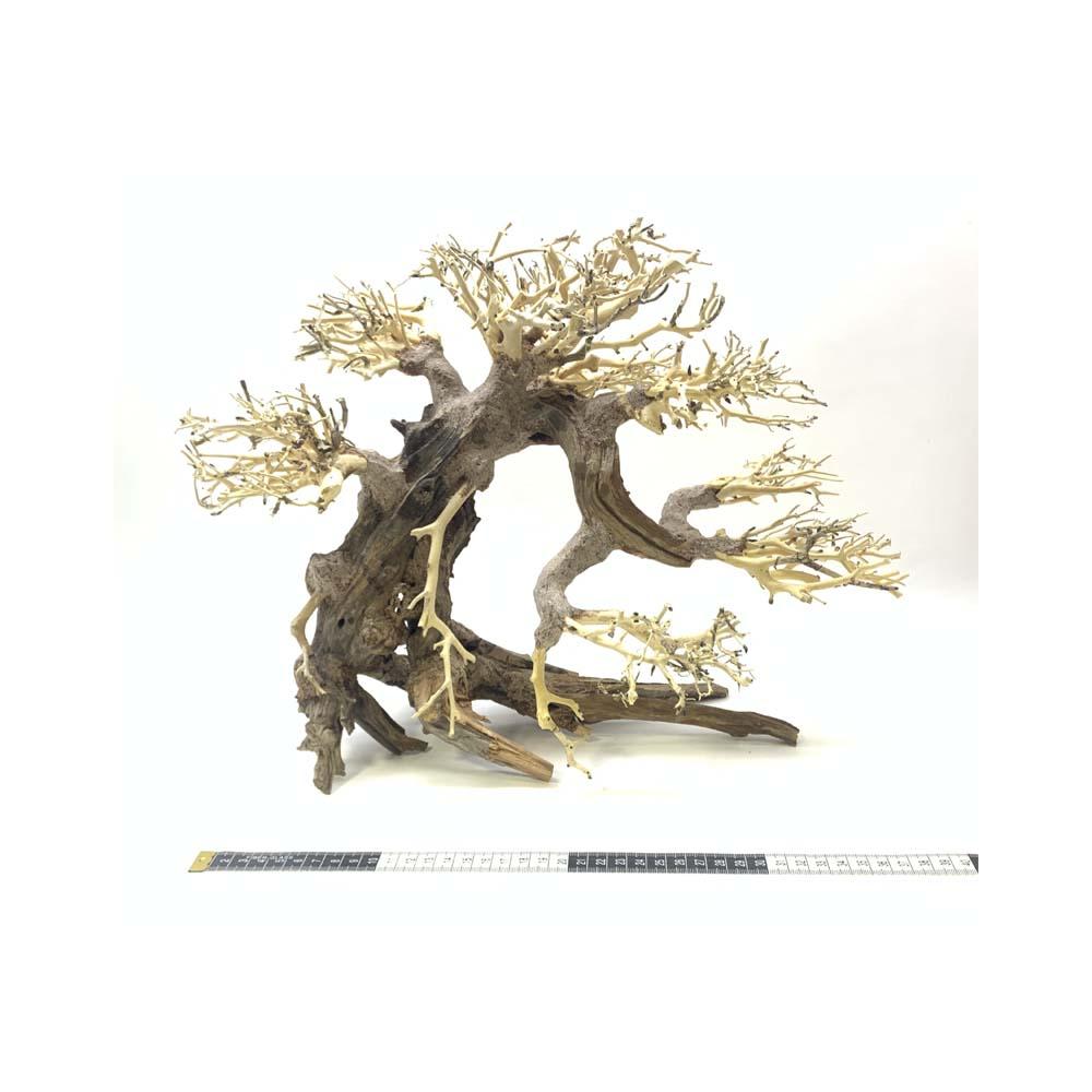 Bonsai Driftwood Creation Large