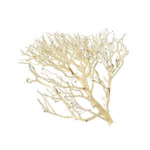Coral Driftwood Medium